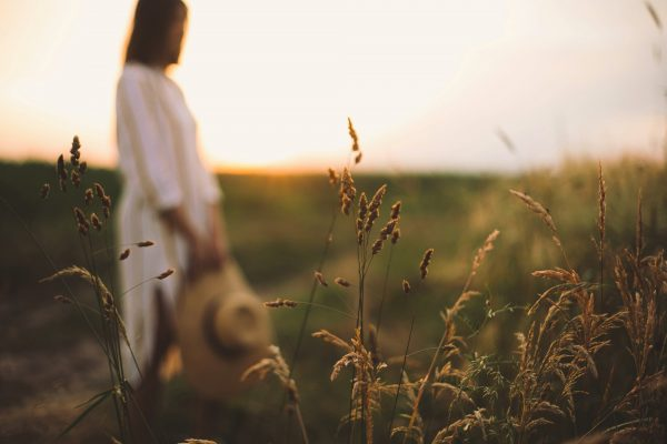 Herbs and grasses in sunset light on background of blurred woman